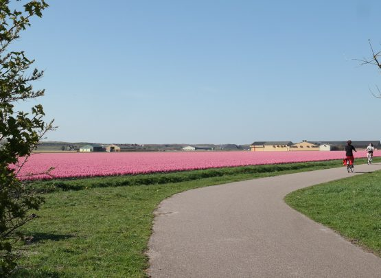 Mooie fietsroutes in Noord Holland